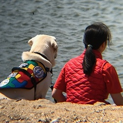 Maeve with her Autism Service Dog from Service Dogs by Warren Retrievers