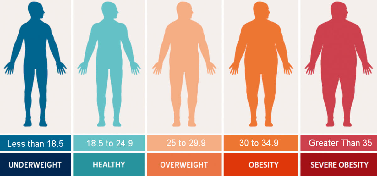 Fig 2. Shows a diagram of 5 human silhouettes classified as; underweight, normal, overweight, obese and extremely obese.