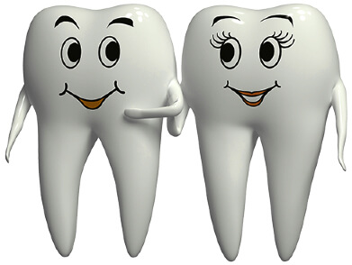 Cartoon illustration of two teeth with male and female faces.