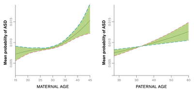 These charts show generalized additive model estimates of the probability of ASD in the Stockholm Youth Cohort. Dashed lines show 95 percent confidence intervals.