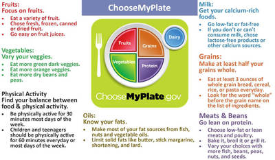 MyPlate is the current nutrition guide published by the USDA Center for Nutrition Policy and Promotion, a food circle depicting a place setting with a plate and glass divided into five food groups.