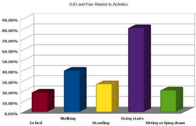 Chart showing pain levels related to activities in persons with DJD