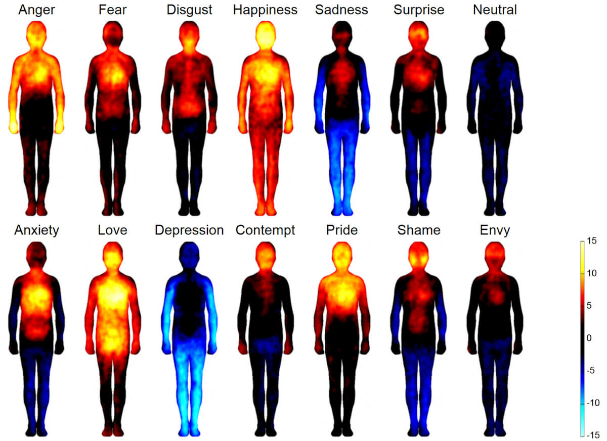 Bodily topography of basic (Upper) and nonbasic (Lower) emotions associated with words. The body maps show regions whose activation increased(warm colors) or decreased (cool colors) when feeling each emotion. (P<0.05 FDR corrected;t>1.94). The colorbar indicates thet-statistic range. Different emotions are associated with discernible patterns of bodily sensations.