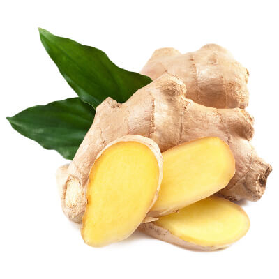 Ginger root (rhizome).