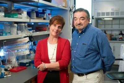 This image shows Jennifer Cochran, associate professor of bioengineering, and Amato Giaccia, professor of radiation oncology at Stanford. Photo Credit: Stanford Engineering
