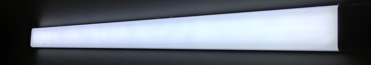 Light Emitting Diode (LED) light.