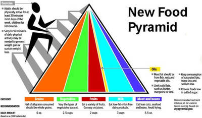 Picture of the new food pyramid.