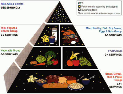 Picture of the old food pyramid.