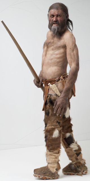 "Reconstruction of the Iceman, ""Ötzi,"" who is believed to have died 5,300 years ago. His frozen cadaver was found in the Alps in 1991, nearly perfectly preserved, and has provided a wealth of scientific study material. Image Credit: South Tyrol Museum of Archaeology, Bolzano, Italy."