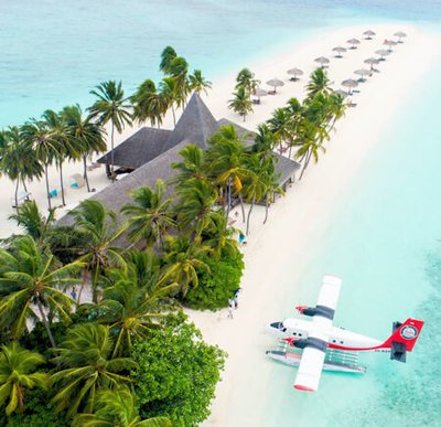 Seaplane moored beside trees on a tropical white sandy beach - Photo by Shifaaz shamoon on Unsplash.