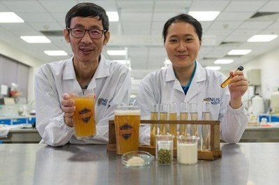 Image depicts Associate Professor Liu Shao Quan (left) and Miss Chan Mei Zhi Alcine (right) from the Food Science and Technology Programme at NUS created a novel probiotic beer that boosts immunity and improves gut health. Photo Credit: National University of Singapore.
