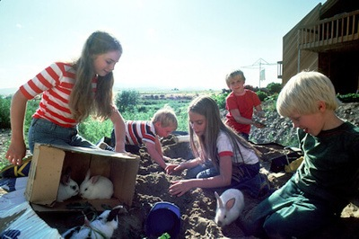 Picture shows five children playing with pet rabbits outdoors.