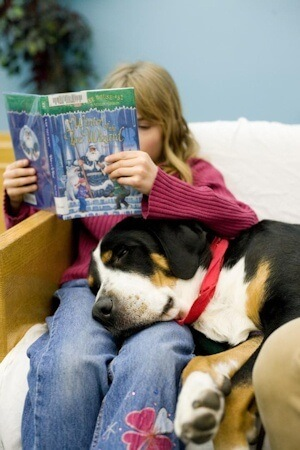Second-grade students who read aloud to dogs in an after school program demonstrated improved attitudes about reading, according to researchers at Tufts Institute for Human-Animal Interaction at Tufts University. Photo Credit: Melody Ko for Tufts University.