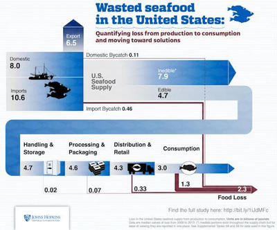 This image shows from sea - to table - to trash - how seafood is wasted - Picture Credit: Johns Hopkins Center for a Livable Future