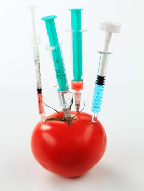Red tomato with 4 syringes stuck in it
