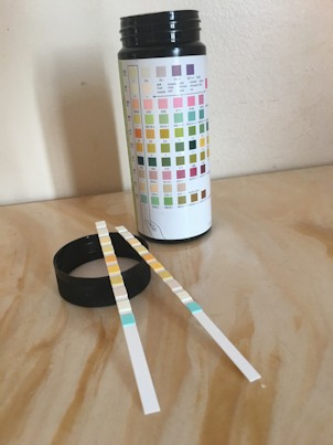 Two Test Strips Or Dipsticks Showing The Colored Pad Areas Resting